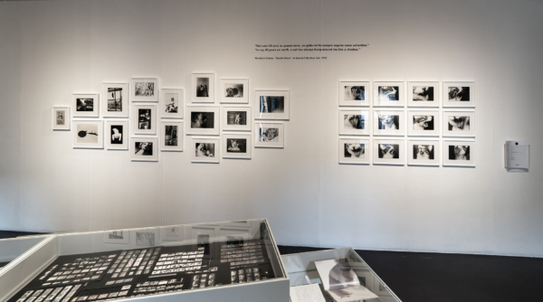"(Wall) The series ""Sasuke"" 1977-78(Vitrine) Contact sheets and books of Sasuke"