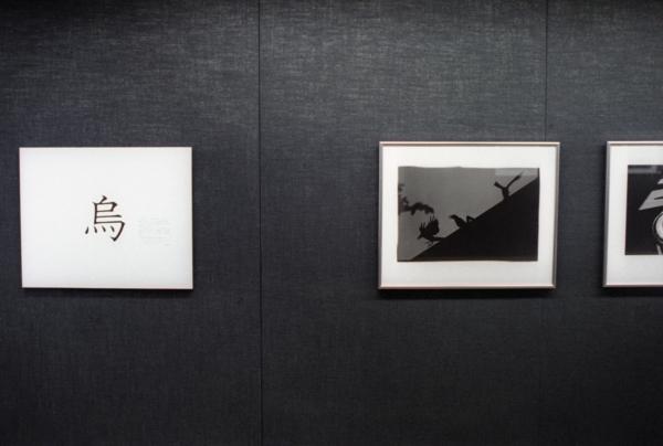 Ravens Tokyo Episode, 1981(烏、東京篇、1981: Karasu Tokyo-hen, 1981)